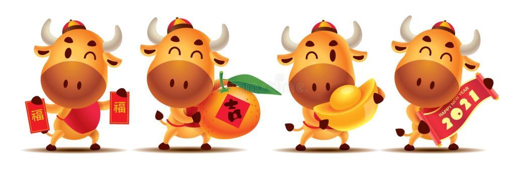 Dumplings (wonton) zelf maken chinese new year
